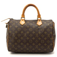 Women bags: Brown Leather Speedy 30 Handbag