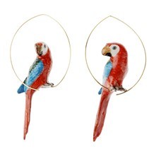 Perroquet rouge - Pendientes - multicolor