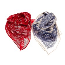 Lot de 2 foulards - multicolore