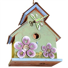 Green Dragonfly Bird House