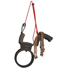 Brown/Red Cast Iron Horse Swing