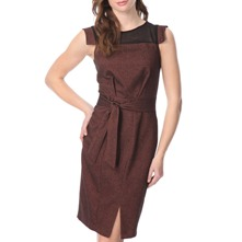 Brown/Black Sheer Panel Pencil Dress
