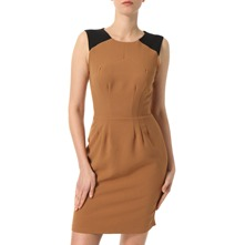 Tan/Black Panel Pencil Dress