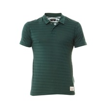 Polo ray en jersey vert lzard