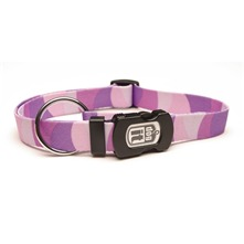Collier Violet MM Dog it