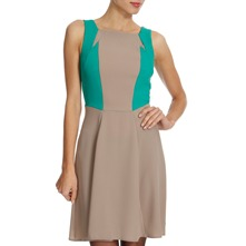 Taupe/Green Panelled Dress