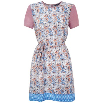 French Connection Blue/Pink Paisley Silk Dress