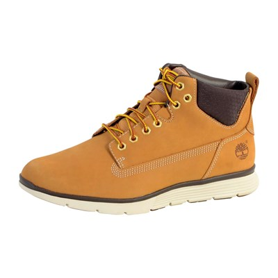 Chaussures Homme | Timberland BASKETS MONTANTES MARRON