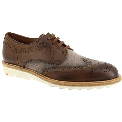 Llyod DERBIES MARRON