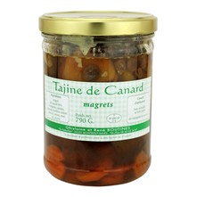Lot de 5 Tajine de canard - multicolore