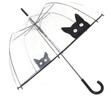 Chat - Parapluie - transparent