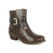 Orion - Bottines - marron