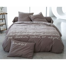 Pur coton percale Taupe - Drap plat - taupe