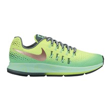 ZOOM PEGASUS 33 SHIELD (GS) - Chaussures de marche - bicolore