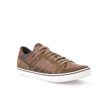 Geox - Box - Sneakers - marron - 2125523