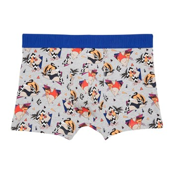New Katchiz Quatreviz - Boxer court - gris