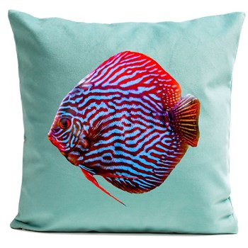 Mr Red - Housse de coussin - turquoise