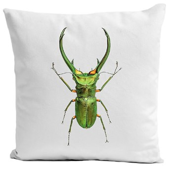 Insect I - Housse de coussin - blanc