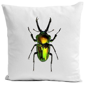 Insect V - Housse de coussin - blanc