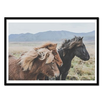 Wall Editions - Wild Horses in Iceland Lanscape - Affiche art - multicolore
