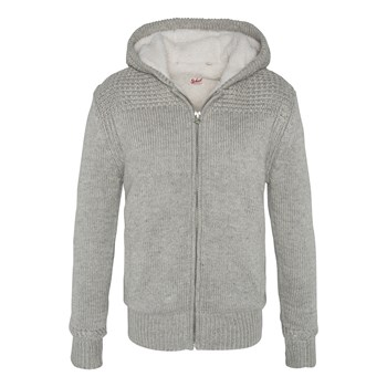 Schott - PL Fact 2 - Sweat à capuche - gris