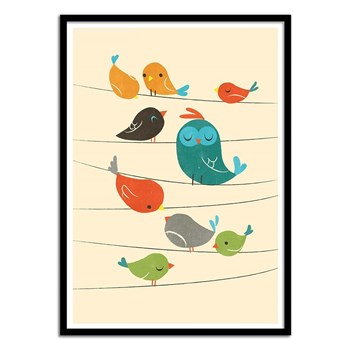 Wall Editions - Colorful birds - Affiche art 50x70 cm pour enfants