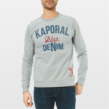 Duol - Sweat-shirt - gris chine