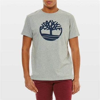 Timberland - T-shirt manches courtes - bruyère