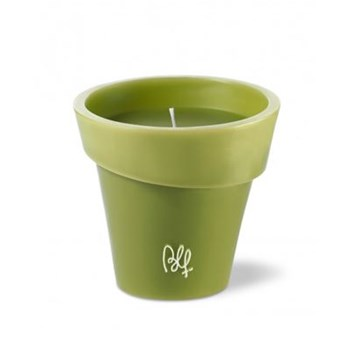 Assimetric olive - Bougie pot 40h - Verveine citronnelle