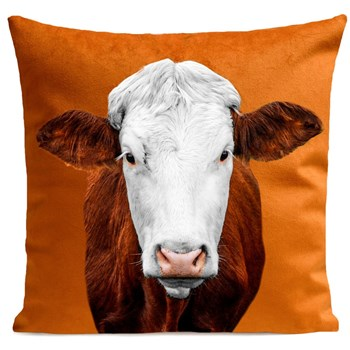 Artpilo - Mrs Cow - Coussin en velours - marron clair