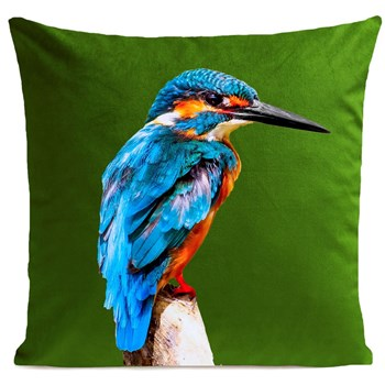 Artpilo - Little Blue Bird - Coussin carré - vert