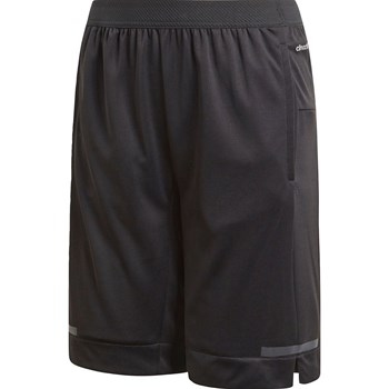 adidas Performance - VB Chill - Short - negro