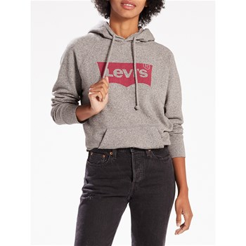 Levi's - Graphic - Sweat à capuche - gris