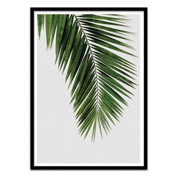 Wall Editions - Illustration Plante - Palm Leaf - Affiche art 50 x 70 cm