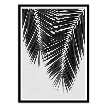 Wall Editions - Illustration - Palm Leaf Part 3 - Affiche art 50x70 cm enfants