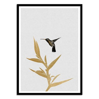 Wall Editions - Hummingbird and flower - Affiche art 50 x 70 cm - multicolore