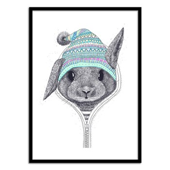 Wall Editions - Illustration Bébé Enfant - The Rabbit in a hood - Affiche art 50x70 cm