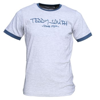 Teddy Smith - Ticlass mc - T-shirt manches courtes - gris