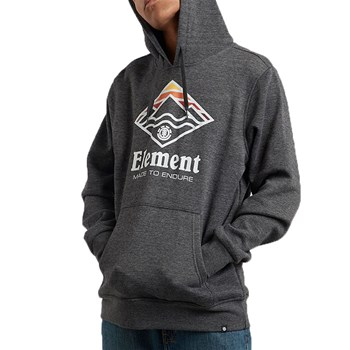 Element - Layer hood - Sweat à capuche - gris