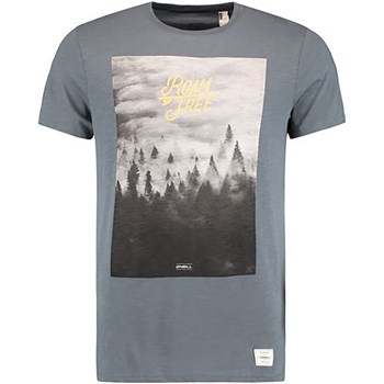 O'Neill - Wildlife t-shirt - T-shirt manches courtes - gris