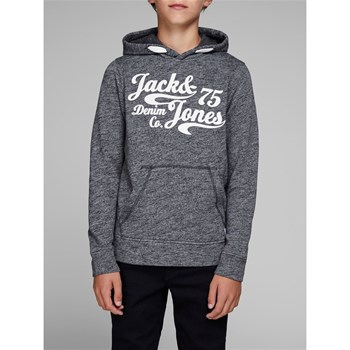 Jack & Jones - Panther - Sweat à capuche - bleu marine