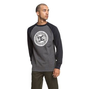 DC Shoes - Sweat-shirt - gris