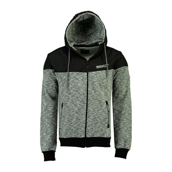 Geographical Norway - GUOLITY - Sweat à capuche - gris clair