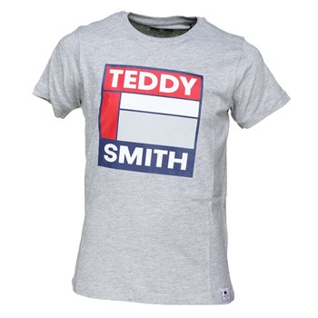 Teddy Smith - Tegis mc - T-shirt manches courtes - gris