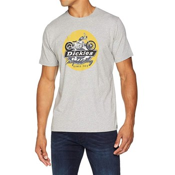 Dickies - T-shirt manches courtes - gris
