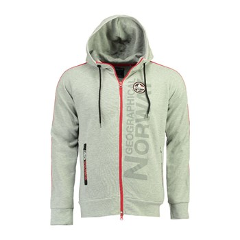 Geographical Norway - Garli - Sweat à capuche - gris souris