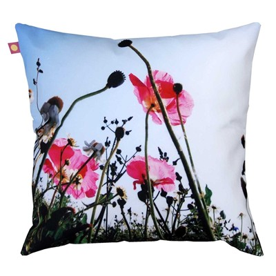 Coquelicots roses - Coussin - multicolore