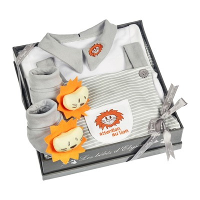 Coffret lion - gris