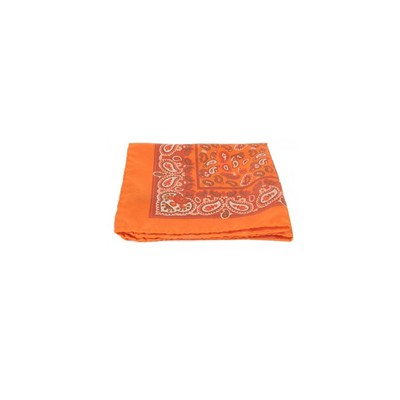 POCHETTE SQUARE Bird of Paradise - Pochette en soie - orange