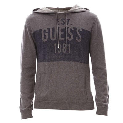 GUESS UNDERWEAR MEN Sweat à capuche - gris souris